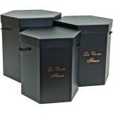 Коробка для цветов 3в1 Шестиугольник с ручками (255*222*260) логотип черный  1483