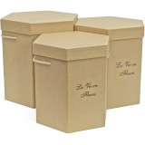 Коробка для цветов 3в1 Шестиугольник с ручками (255*222*260) логотип  капучино  1490