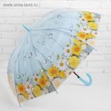Зонт 3539005 трость полуавтоматический «Ромашки» 8 спиц R = 48 см цвет
