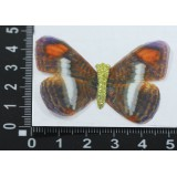 Бабочка шифон средняя 4,5см (цена за 7шт) №52